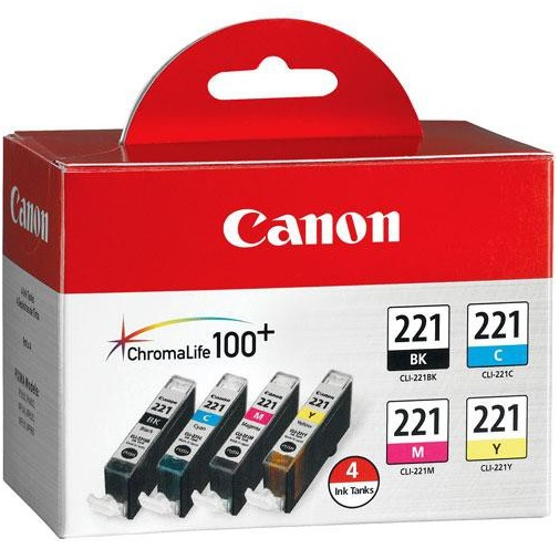 2946B004 Ink Cartridge - Canon Genuine OEM (Bundle Pack)