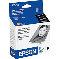 T034120 Ink Cartridge - Epson Genuine OEM (Photo Black)