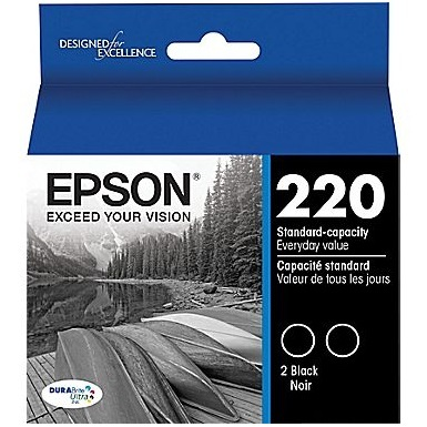 T220120-D2 Ink Cartridge - Epson Genuine OEM (Multipack)